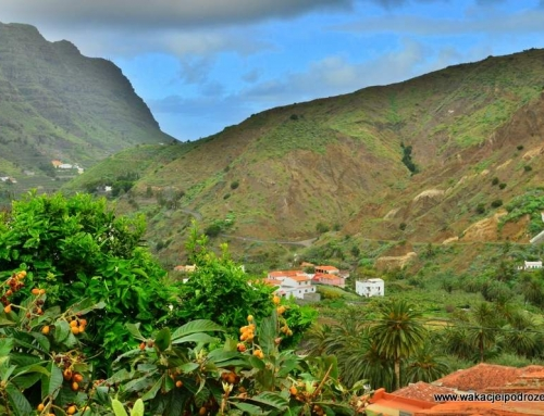Noclegi na La Gomerze – finca Casas Rurales – Hermigua