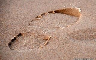 tamron 16-300 test na plaży