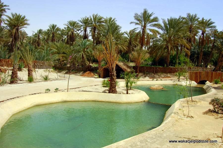 Tunezja Nefta