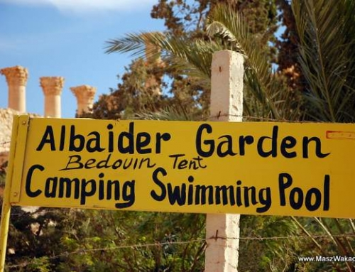 Syria noclegi. Al Baider – tani camping w Palmyrze