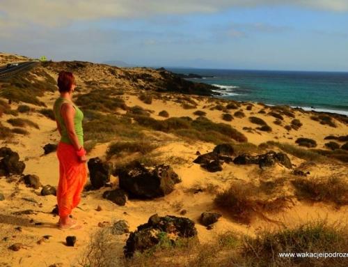 Ostatnia szansa by zobaczyć dzikie oblicze Fuerteventury