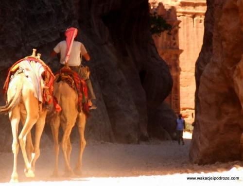 Co zobaczyć w Jordanii – wycieczka do Petry