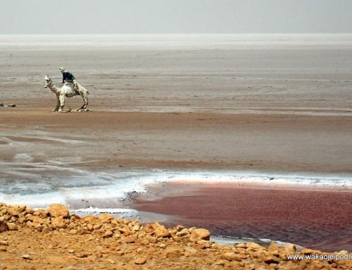 Chott el Jerid – słone jezioro w Tunezji
