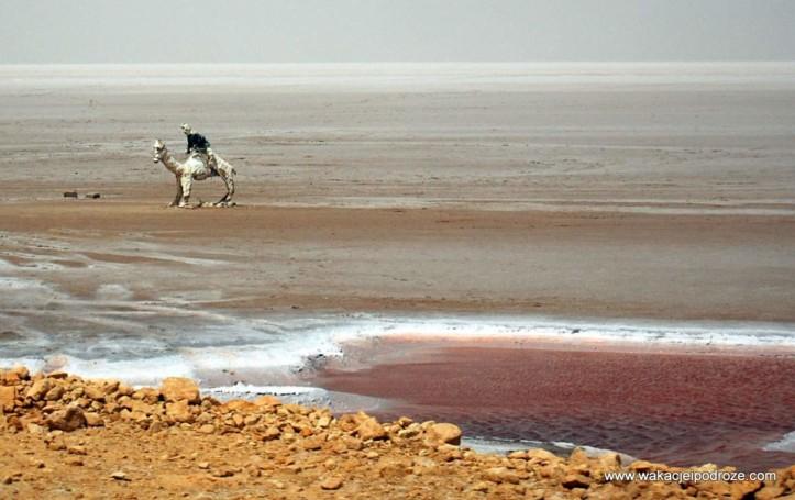 Słone jezioro w Tunezji