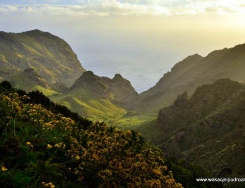 Teneryfa – wąwóz Masca – najbardziej widokowa trasa