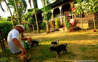 Tanie noclegi w Malezji - Pangkor