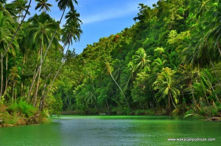 loboc pływające restauracje na Boholu