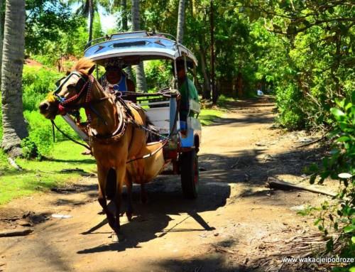 Indonezja – wyspa Gili Meno na miesiąc miodowy