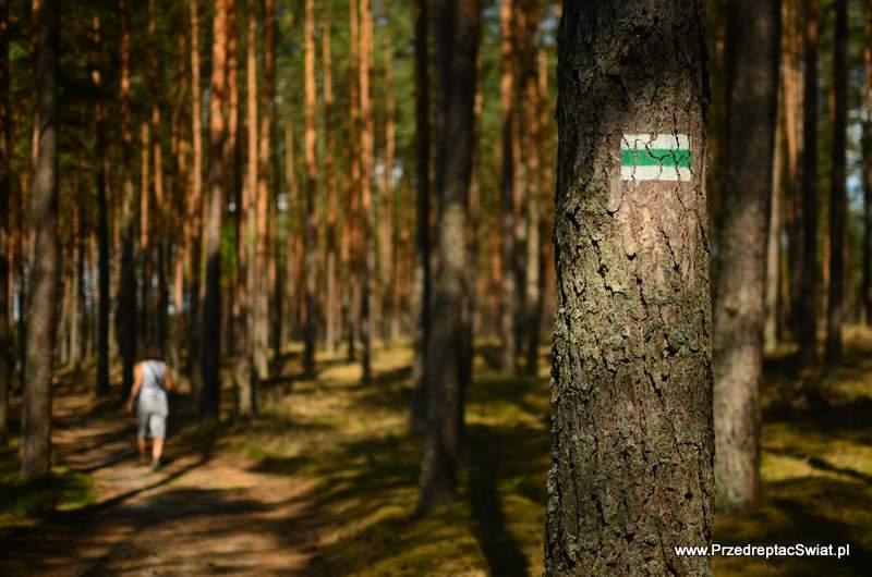 Wdzydze szlaki piesze na Kaszubach