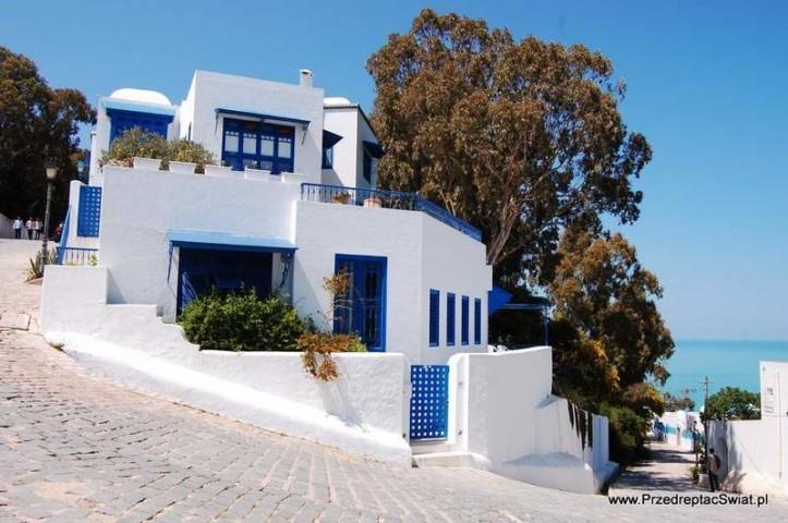 Wycieczka do Sidi Bou Said