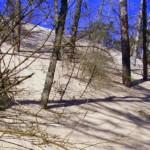 ruchome wydmy w Smołdzińskim Parku Narodowym