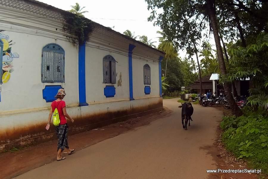 Anjuna - North Goa