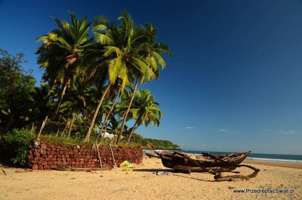Kiedy jechać na Goa