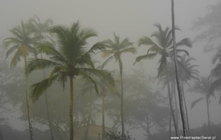 Pogoda na Goa