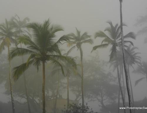 Pogoda na Goa – kiedy jechać ?