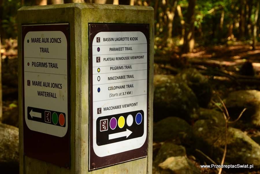 Gorges Black River Park - co warto zobaczyć na Mauritiusie
