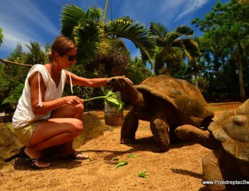 9 ciekawych miejsc, które warto zobaczyć na Mauritiusie