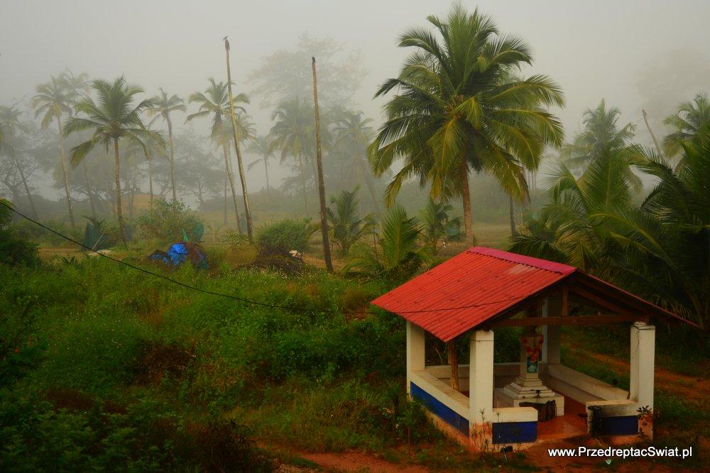 Kiedy jechać na Goa ?