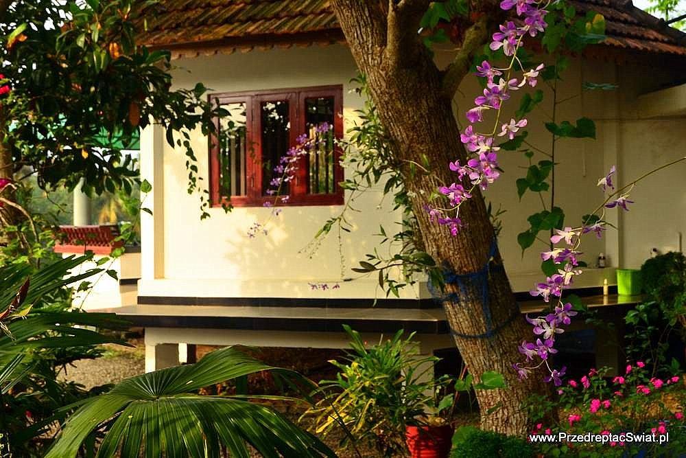 domek do wynajęcia w Kerali