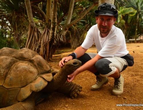 Z żółwiem olbrzymim pod rękę …