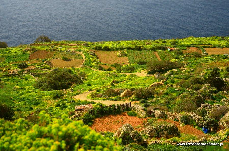 Malta - krajobraz