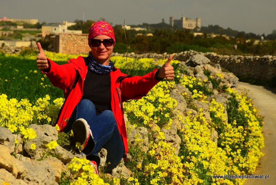 Malta kamienny murek