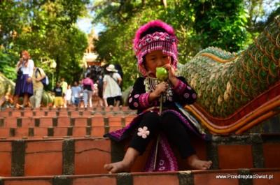 Co warto zobaczyć w okolicy Chiang Mai
