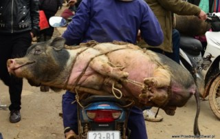 Wietnam nieznany - sunday market Dong Van - lokalny targ w Wietnamie