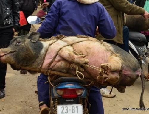 Prawdziwie wietnamski, lokalny targ w Dong Van