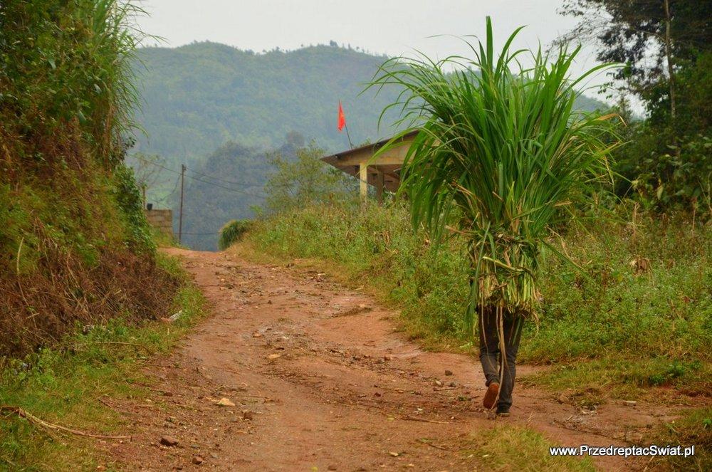Dong Van trekking