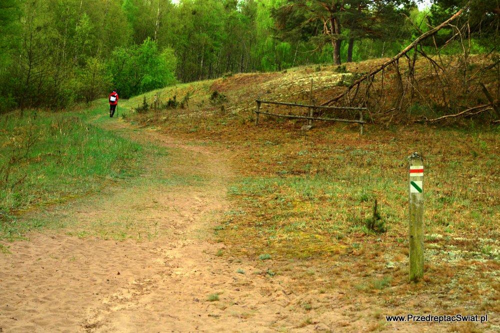 Biebrzański Park - szlaki piesze
